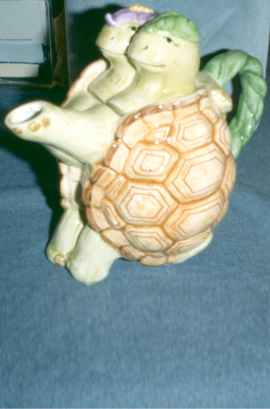 Tortue \ Turttle (A101)